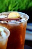 与桂香和苹果切片的刷新的冰茶在塑料杯子 免版税图库摄影