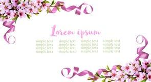 与桃子花和丝绸ribb的春天枝杈的桃红色背景 免版税库存图片