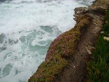 与桃红色冰厂岩石峭壁的白色海浪 免版税图库摄影