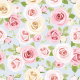 与桃红色和白玫瑰的无缝的样式在蓝色 也corel凹道例证向量 免版税库存照片
