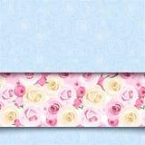 与桃红色和白玫瑰的蓝色卡片 向量EPS-10 库存照片