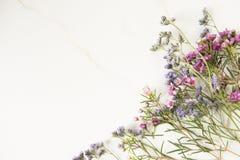 与桃红色和紫色花的静物画 免版税库存图片
