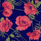与桃红色和红色鸦片的无缝的样式在植物的st开花 免版税库存照片