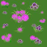 与桃红色和紫罗兰色花的花卉无缝的样式 免版税库存照片