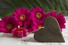 与桃红色大丁草的心形的标志 库存图片