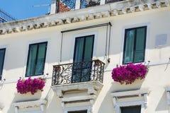 与桃红色开花的喇叭花花的白色大厦 免版税库存图片
