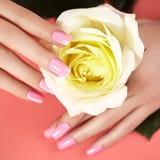 与桃红色指甲油的被修剪的钉子 与nailpolish的修指甲 时尚艺术修指甲,发光的胶凝体亮漆 钉牢沙龙 免版税库存图片
