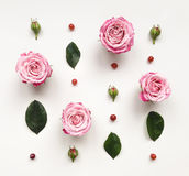 与桃红色明亮的玫瑰和叶子的装饰框架在白色背景 免版税库存照片