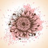 与桃红色油漆的手拉的花卉背景 库存例证