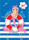 与桃红色火鸟的滑稽的卡片在条纹背景 免版税库存图片