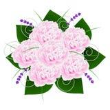 与桃红色牡丹和淡紫色的花束开花与绿色叶子 库存照片