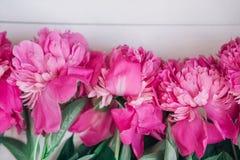 与桃红色牡丹的花卉框架在木背景 母亲节或妇女天 背景横幅开花表单少许桃红色螺旋 库存图片