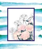 与桃红色牡丹花束的花卉贺卡,与您的文本的空间 向量 图库摄影