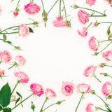 与桃红色玫瑰、芽和叶子的花卉框架在白色背景 红色上升了 平的位置,顶视图 库存图片