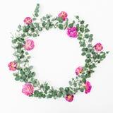 与桃红色玫瑰和玉树的花卉圆的框架在白色背景分支 平的位置,顶视图 库存照片
