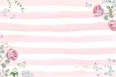 与桃红色玫瑰和蝴蝶的水彩花卉框架 免版税图库摄影