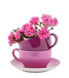 与桃红色玫瑰的咖啡杯 免版税库存照片