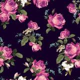 与桃红色玫瑰的无缝的花卉样式在黑暗的背景 向量例证