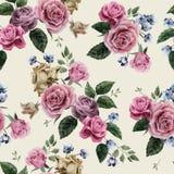 与桃红色玫瑰的无缝的花卉样式在轻的背景, wat 图库摄影