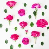 与桃红色玫瑰的花卉样式开花和在白色背景的叶子 平的位置,顶视图 花纹理 免版税图库摄影