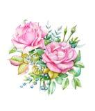 与桃红色玫瑰的水彩花束 库存照片