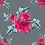 与桃红色玫瑰花束的水彩无缝的样式在灰色背景的 免版税图库摄影