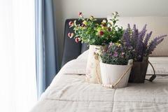 与桃红色玫瑰花的床,紫色淡紫色花和红色蘑菇在花盆开花 免版税库存图片