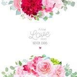 与桃红色玫瑰,八仙花属的花卉传染媒介横幅框架, 皇族释放例证
