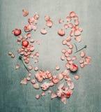 与桃红色的美好的花卉框架开花在绿松石土气背景的瓣, 免版税图库摄影