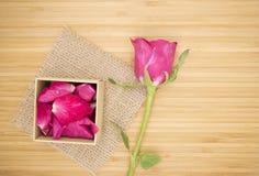 与桃红色箱子的桃红色玫瑰在木背景,葡萄酒他们 免版税库存照片