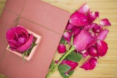 与桃红色箱子的桃红色玫瑰 库存图片