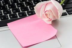 与桃红色纸笔记的白色和桃红色玫瑰 库存图片