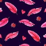 与桃红色羽毛的水彩无缝的样式 向量例证