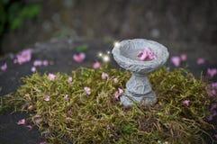 与桃红色花和发光的光的神仙的鸟浴 库存图片