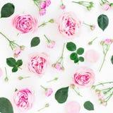 与桃红色花和叶子的花卉样式在白色背景 平的位置,顶视图 免版税库存图片