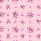 与桃红色花的无缝的纹理 库存照片