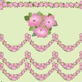 与桃红色花的无缝的边界 库存图片