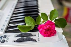 与桃红色花的爱情歌曲钢琴 免版税库存图片