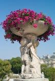 与桃红色花的美丽的老花盆 免版税库存照片