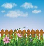与桃红色花的草,叶子,篱芭 免版税图库摄影