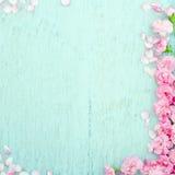 与桃红色花的蓝色木背景 免版税库存照片