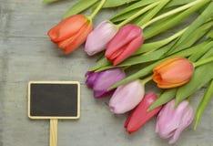 与桃红色郁金香的木灰色空的拷贝空间背景 免版税图库摄影