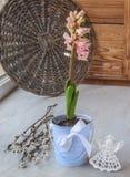 与桃红色风信花的春天在窗口的静物画和天使 库存图片