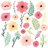 与桃红色,黄色和红色花、树枝、莓果和叶子的汇集 库存照片