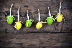 与框架的六个绿色和黄色复活节彩蛋 库存图片