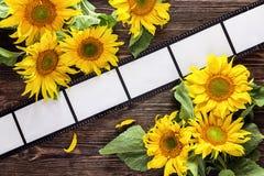与框架的背景以影片和明亮的向日葵的形式 免版税库存图片