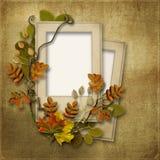 与框架的葡萄酒背景的照片和秋叶 库存图片