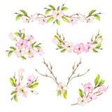 与框架边界、花卉装饰装饰品与水彩开花的花,叶子和分支的一个集合与芽 库存例证