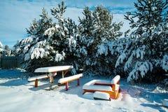 与桌的长凳在雪 免版税库存图片