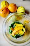 与桔子和柠檬皮的玻璃 免版税库存图片